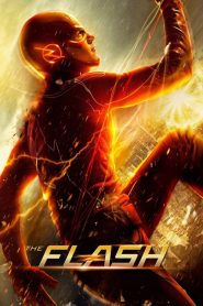 DC: Flash [2014] – Online